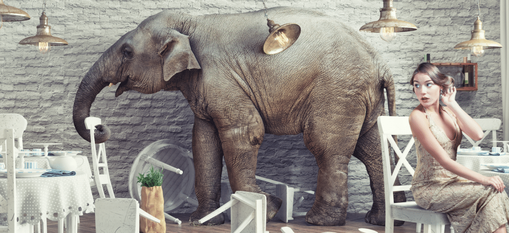During the sales process, it's important you address the elephant in the room right away.