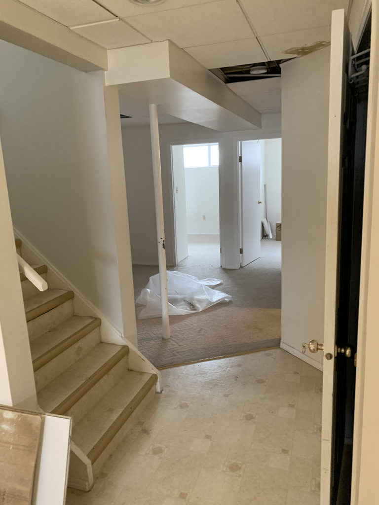 Basement suite renovation